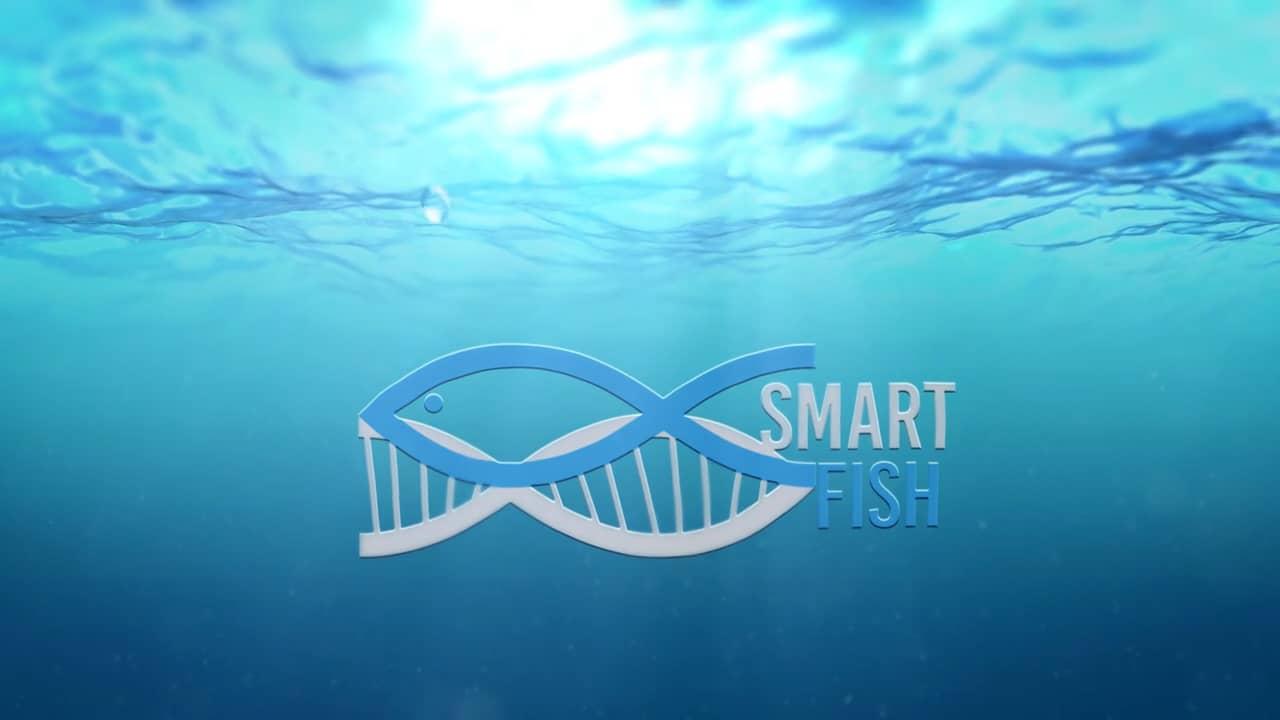 SMARTFISH: l'alta tecnologia al servizio della pesca