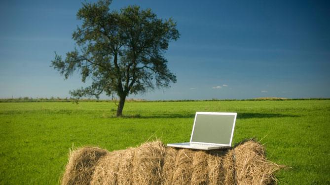 E-commerce e reti di imprese: MIPAAF agevolazioni per Agroalimentare e Pesca